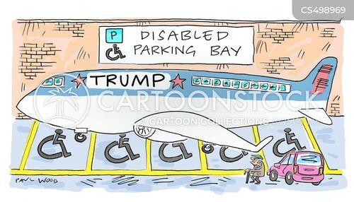 disability access cartoon