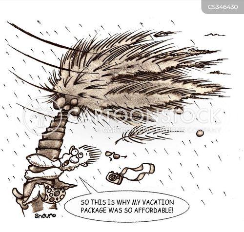 hurricane season cartoon