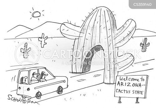 cactus state cartoon