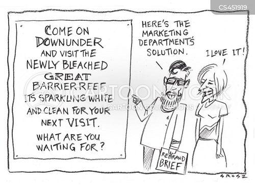 great barrier reef cartoon