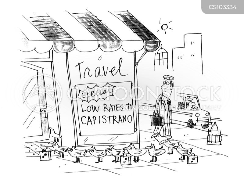 cheap travel cartoon