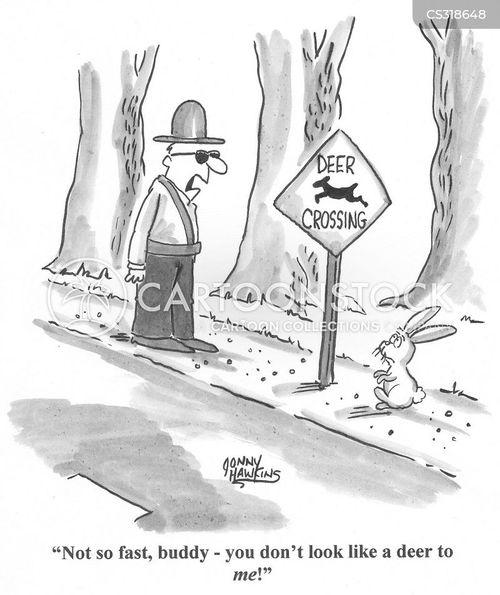forest animals cartoon