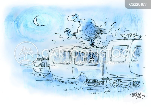 caravan holidays cartoon