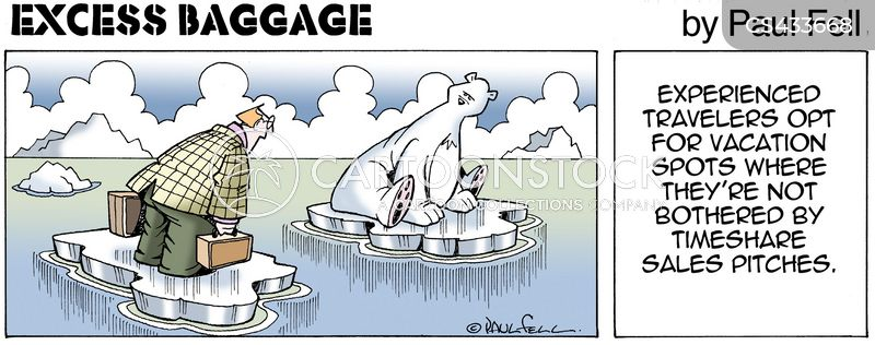 excess baggage cartoon