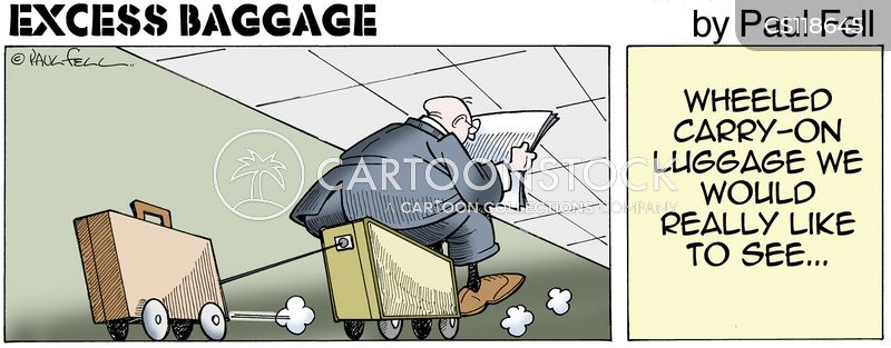 how to add excess baggage in air china