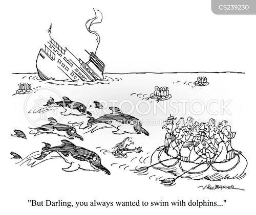 swim with dolphins cartoon