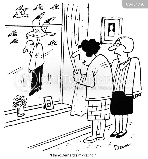bird migration cartoon