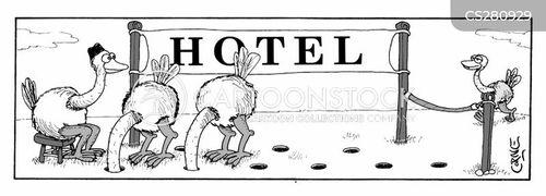 ostrichs cartoon