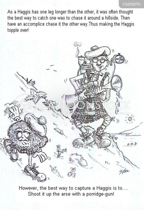 scots cartoon