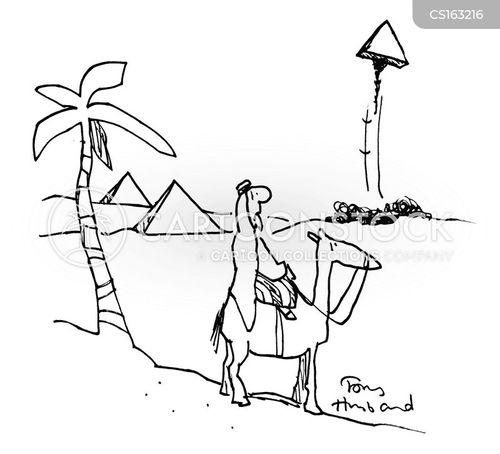 wonder of the world cartoon