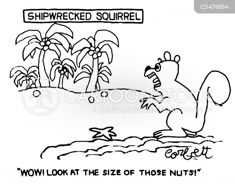 nut hoard cartoon