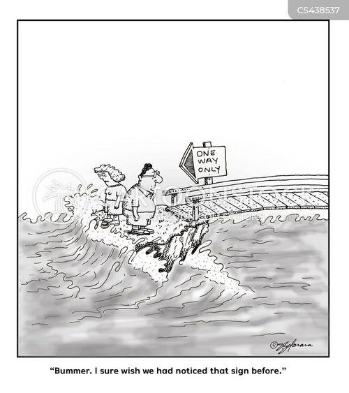 rough seas cartoon