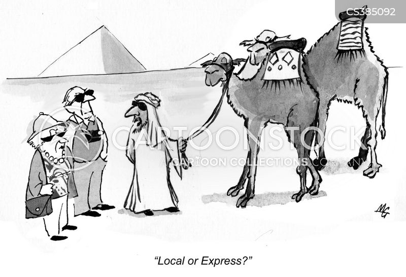 camel ride cartoon