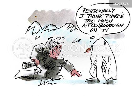 wildlife programs cartoon