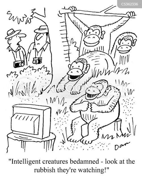 intelligent creatures cartoon