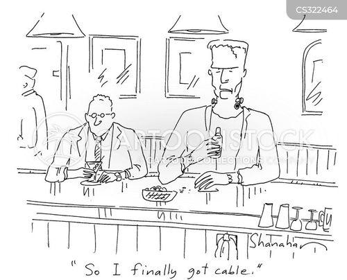 everyday cartoon