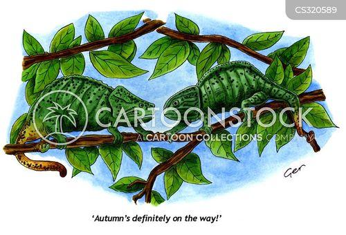 autumn colour cartoon