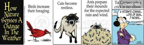arthritic cartoon