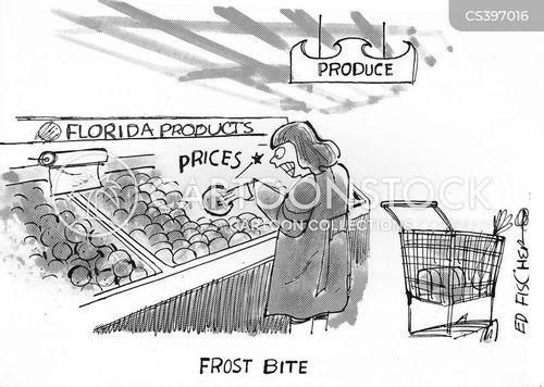 fresh fruit cartoon