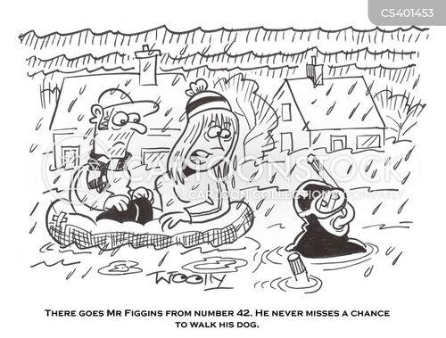 flood levels cartoon