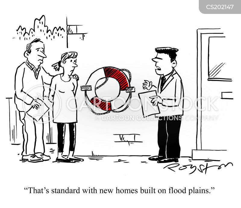 new houses cartoon
