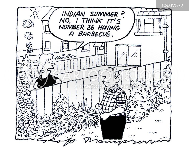 indian summer cartoon