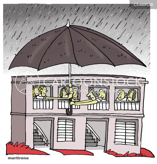 leaking roof cartoon