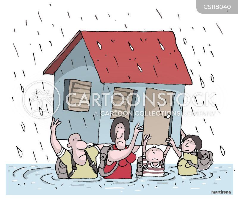 storm damage cartoon