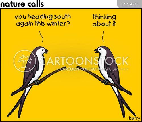 nature calls cartoon