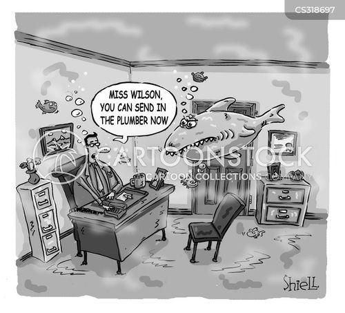 drainage cartoon