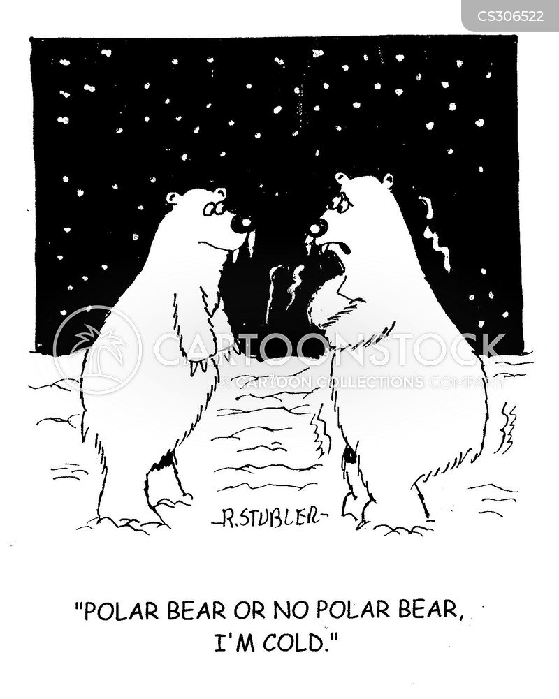 Polar Cartoon, Polar Cartoons, Polar Bild, Polar Bilder, Polar Karikatur, Polar Karikaturen, Polar Illustration, Polar Illustrationen, Polar Witzzeichnung, Polar Witzzeichnungen
