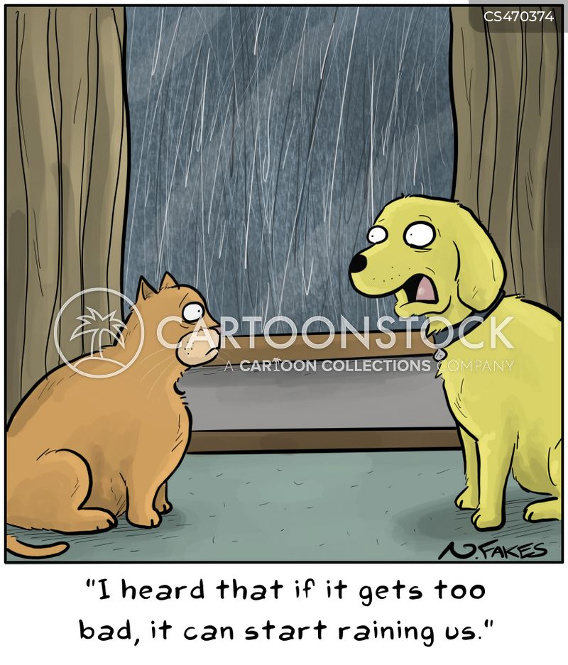 Raining Cats And Dogs Cartoons And Comics Funny Pictures From Cartoonstock