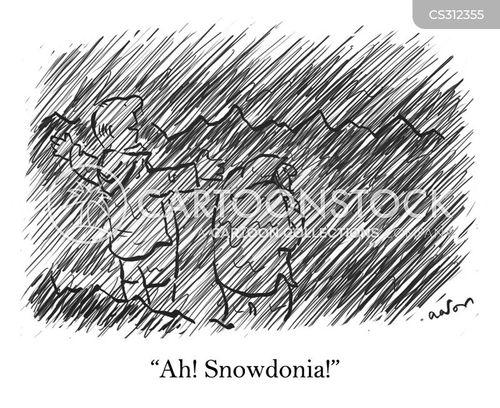 cymru cartoon