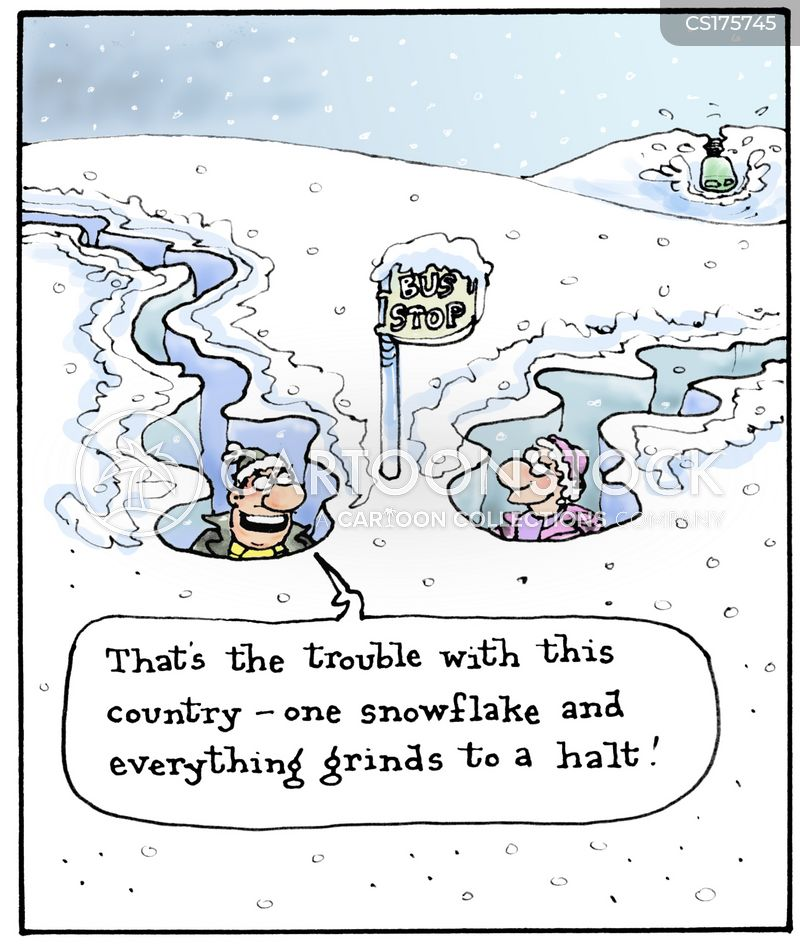 snow flakes cartoon