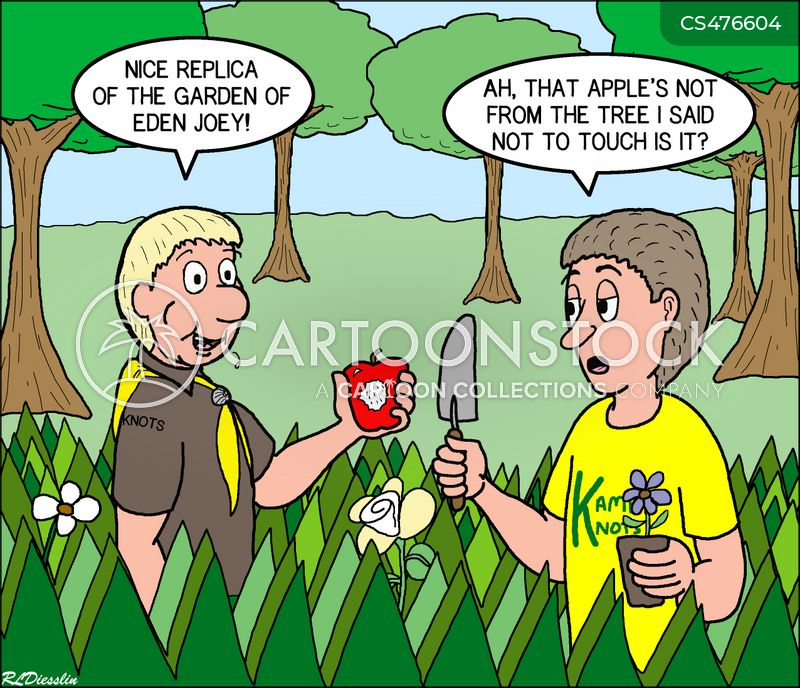 camp-sites cartoon