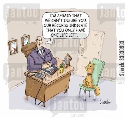 red tape cartoon humor: 'I'm afraid that we can't insure you. Our records indicate that you only have one life left' Colour