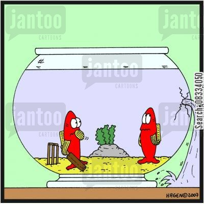 broken glass cartoon humor: Fish Playing Cricket and Break Glass.