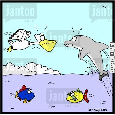 collides cartoon humor: Air Collision.