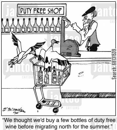 fly south cartoon humor:  'We thought we'd buy a few bottles of duty free wine before migrating north for the summer.'