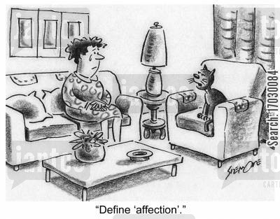 definition cartoon humor: Cat to owner: 'Define 'affection'.'