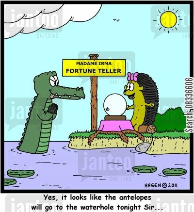 gators cartoon humor: 'Yes, it looks like the antelopes will go to the waterhole tonight Sir...'