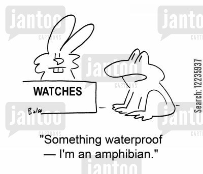new watches cartoon humor: 'Something waterproof -- I'm an amphibian.'