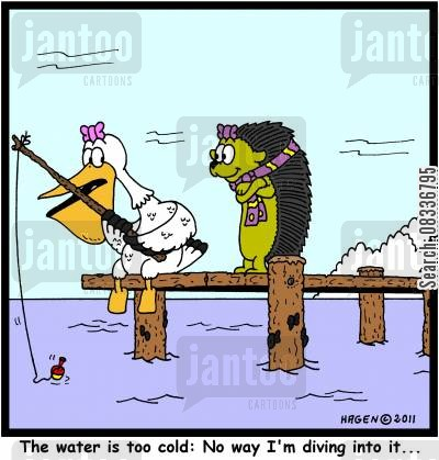 pelican cartoon humor: 'The water is too cold: No way I'm diving into it...'