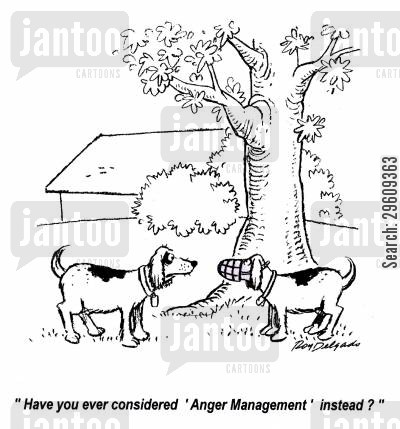bit cartoon humor: 'Have you ever considered 'Anger Management' instead?'