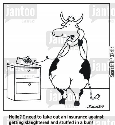 bun cartoon humor: 'Hello? I need to take out an insurance against getting slaughtered and stuffed into a bun!'