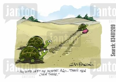 tortoise owner cartoon humor: 'My wife left me months ago . . .that's her over there.'