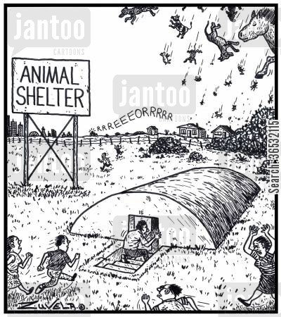 bunkers cartoon humor: Visual Gag: Animal Shelter