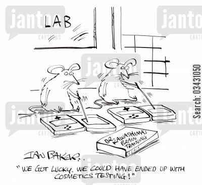 animal experiment cartoon humor: 'We got lucky. We could have ended up with cosmetics testing!'