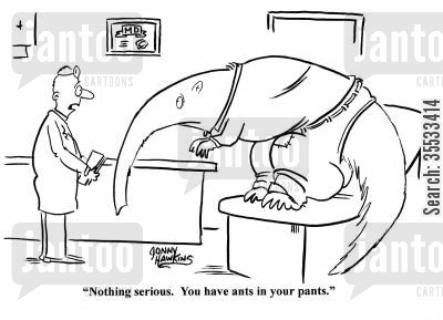 hyperactivity cartoon humor: Doctor to aardvark: 'Nothing serious. You have ants in your pants.'