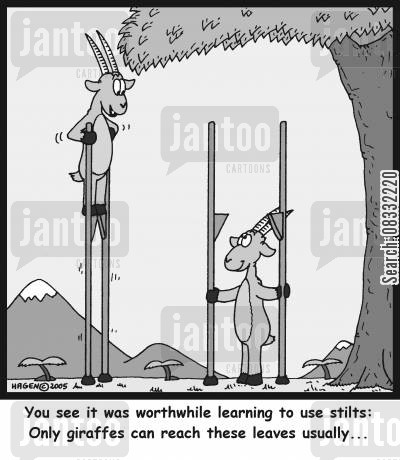 tree trunks cartoon humor: 'You see it was worthwhile learning to use stilts: Only giraffes can reach these leaves usually...'